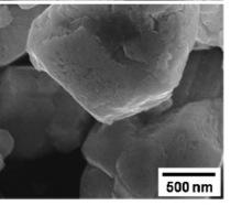 還元剤としてイソアスコルビン酸を添加して液中プラズマで合成した銅微粒子のSEM像。(文献3から)