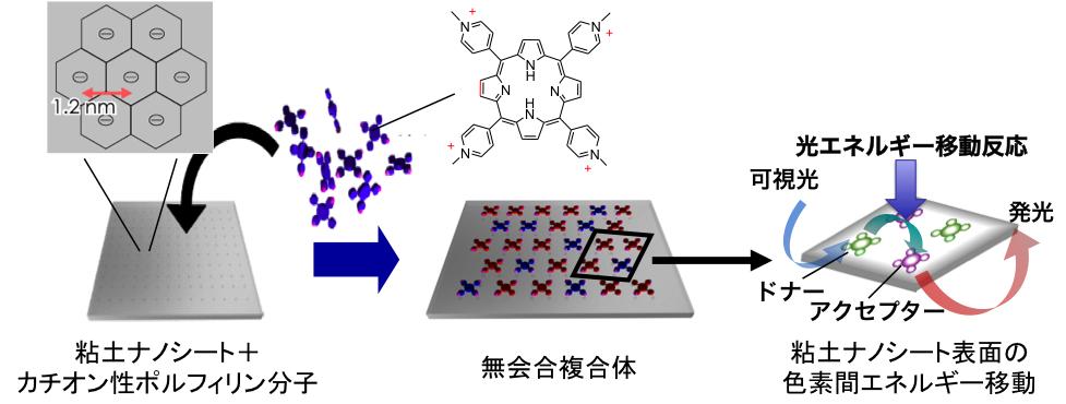 """図2.分子レベルで構造が制御された""""ナノシート―カチオン性ポルフィリン複合体"""
