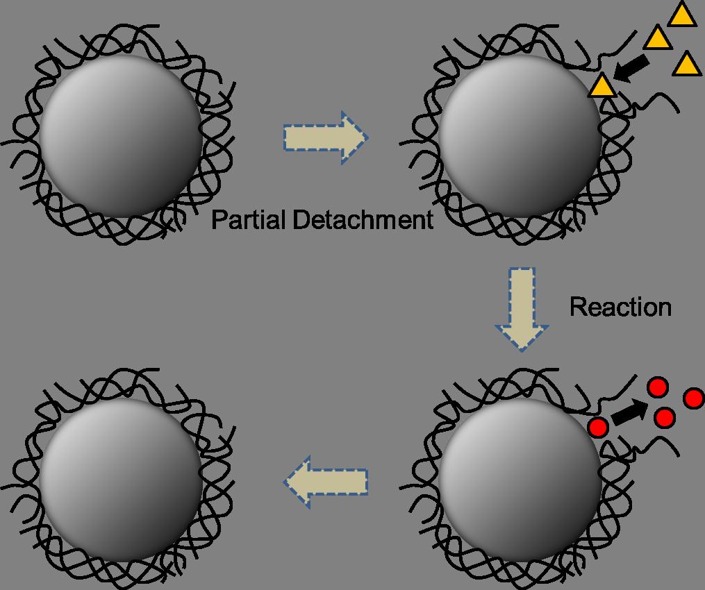fig-7_en